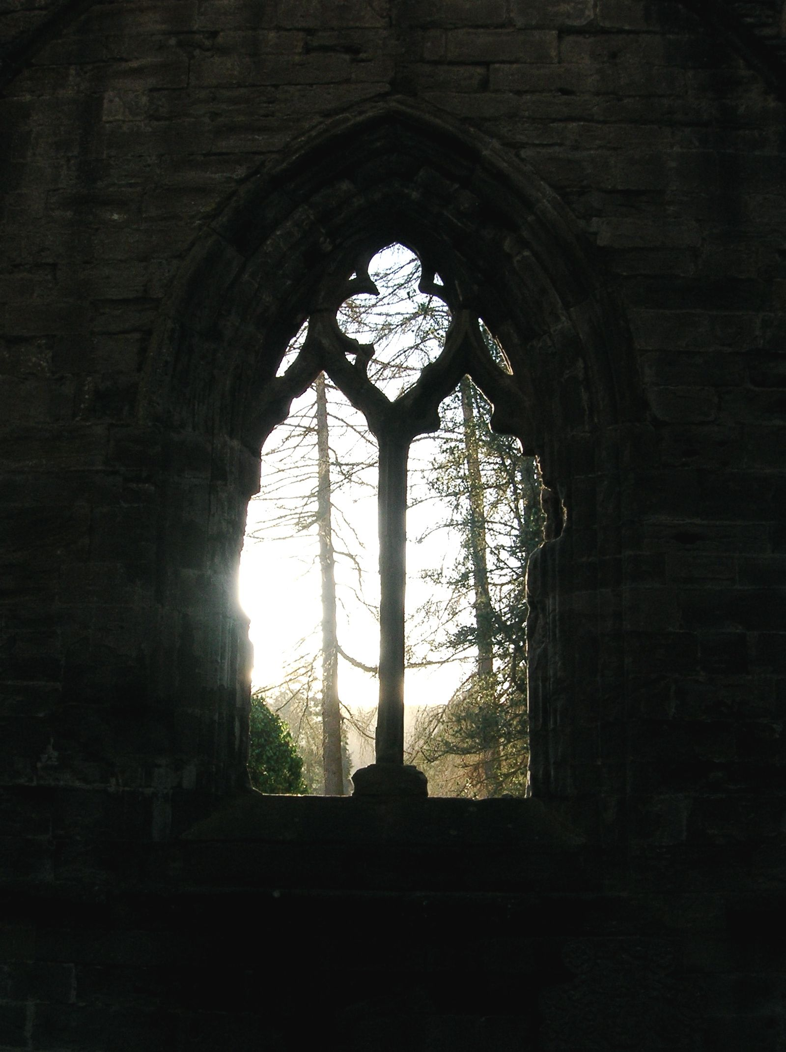 Looking Out from a Church Ruin