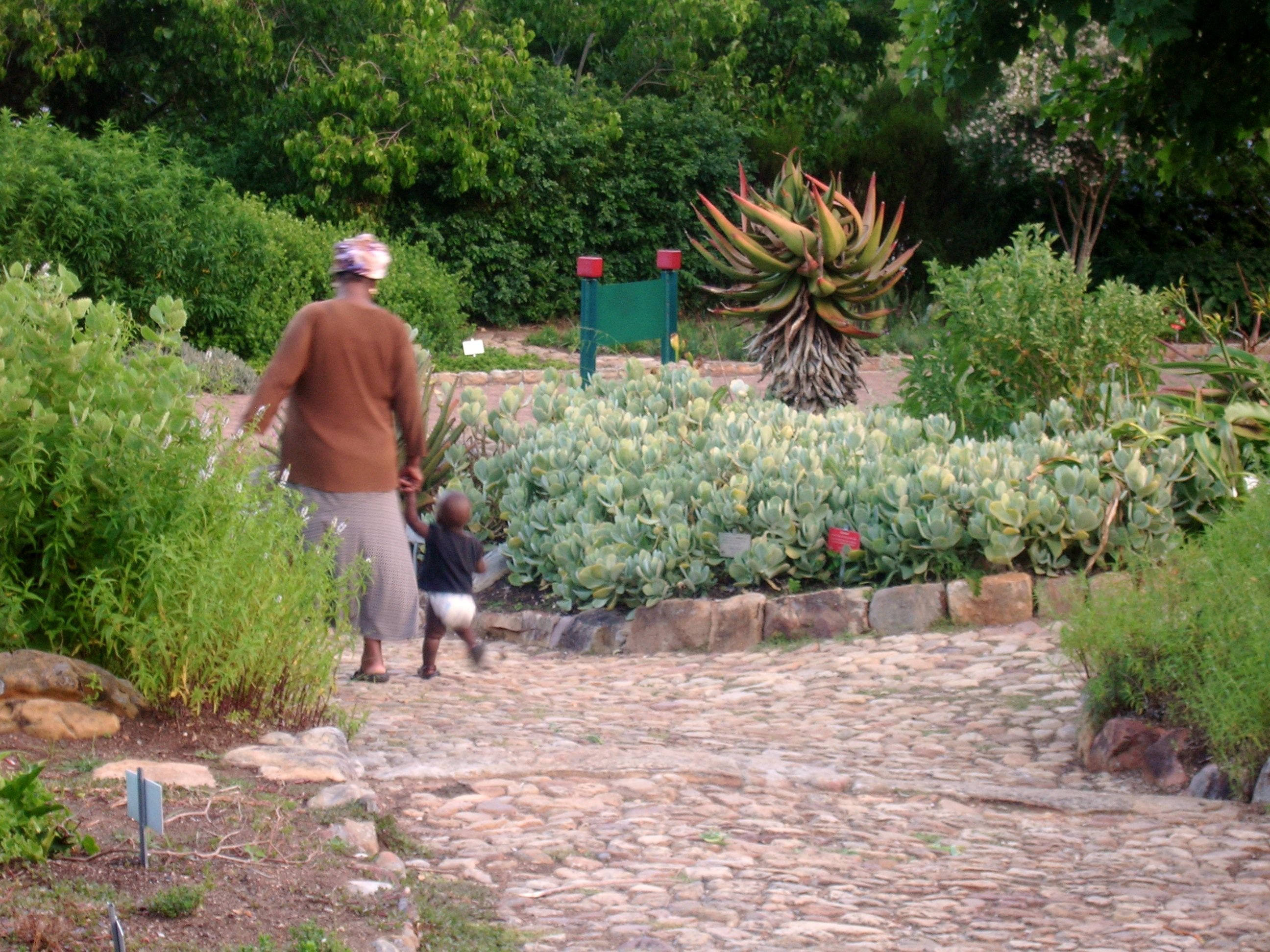 Grandmother & Child in Kirstenbosch Garden