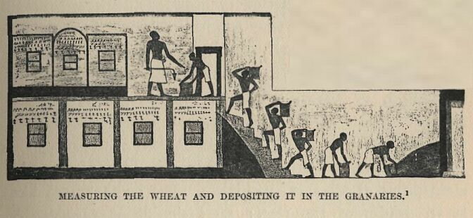 grainery-in-egypt